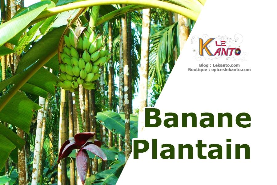 Beignet de banane plantain