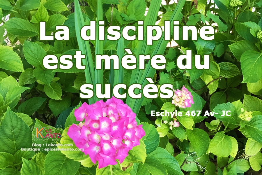 Clé de réussite